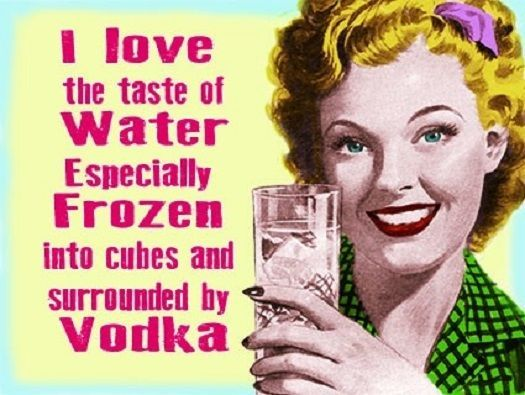 VINTAGE RETRO STYLE METAL WALL PLAQUE FUNNY VODKA SIGN LIVING ROOM KITCHEN GIFT